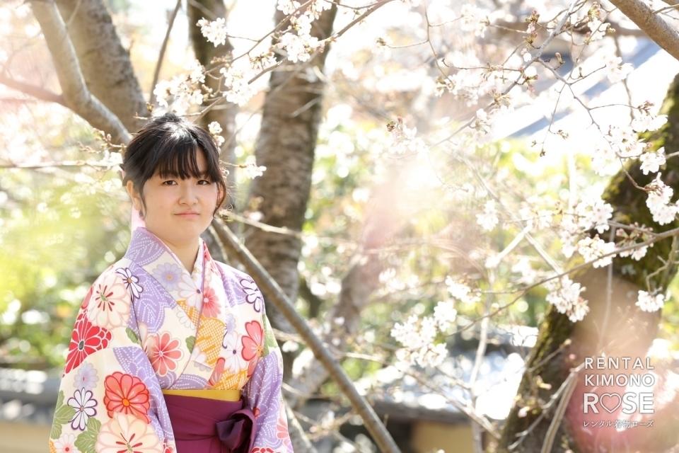 写真:京都・桜咲く高台寺で卒業式当日の卒業袴レンタルの方を撮影
