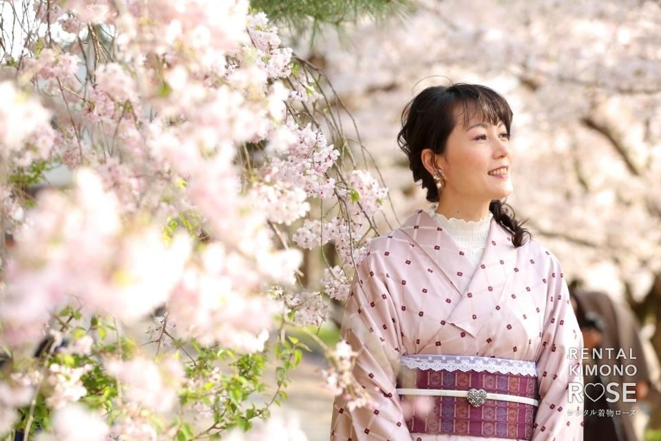 写真:桜咲く京都・高台寺公園で浪漫プラン+観光ロケーション撮影